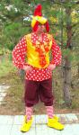 Костюм Петуха символа 2017 года. Прокат костюма 1500 рублей.